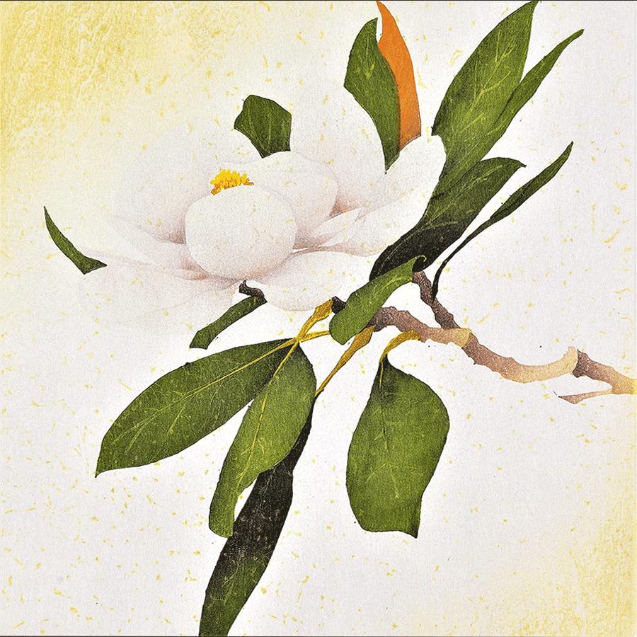 miyayama_Magnolia-3
